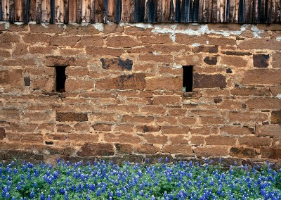 005 Old safehouse and bluebonnets, Mason, TX