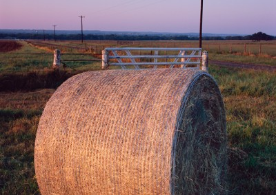 1024 Hay bale, sunrise, LBJ Ranch