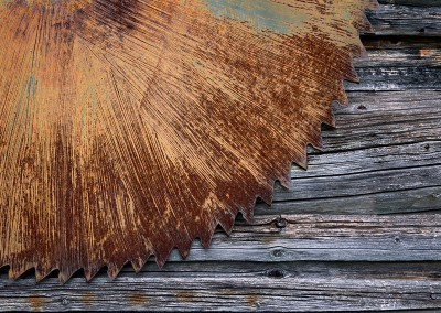 1183 Old saw blade on building, Maine Woods