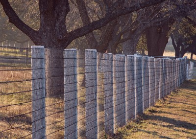 1420 Oaks & fence, sunrise, LBJ Ranch, Stonewall, Texas