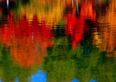 354 Impressionistic reflections, Walden Pond