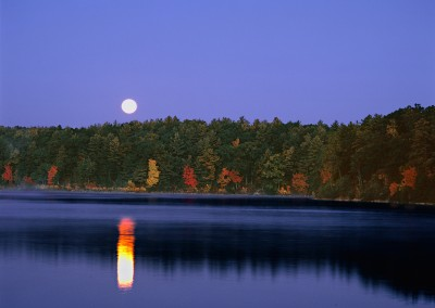 257 Full moon setting, Walden Pond
