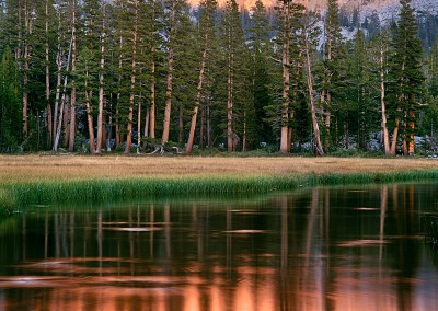 395 Orange sunset, Upper Lyell Fork of the Merced, Yosemite