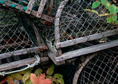 495 Wood lobster traps, Downeast, Maine