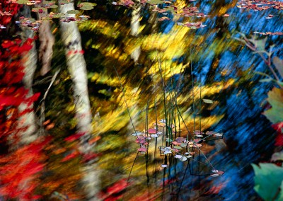 524 Autumn reflections, Mt. Desert Island, Maine