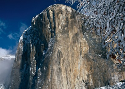 534 El Capitan, fresh snow, Yosemite Valley