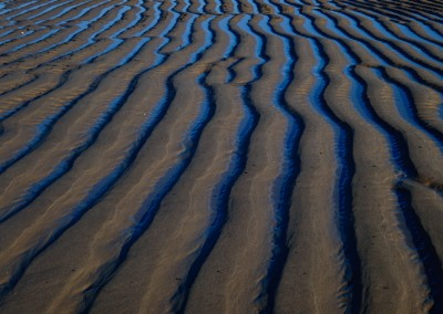 657 Braided sand, Atlantic Ocean, Cape Cod