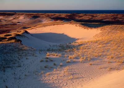 781 Parabolic Dunes, Cape Cod National Seashore