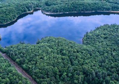 112 Walden Pond aerial, looking north, PANORAMA