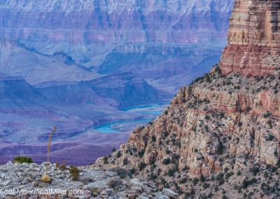 01071 Colorado River, Grand Canyon National Park, Arizona