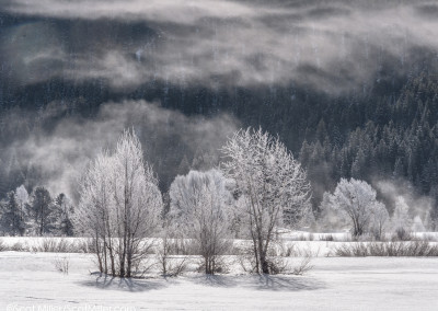 1060181 Frozen landscape, Grand Teton National Park, Wyoming