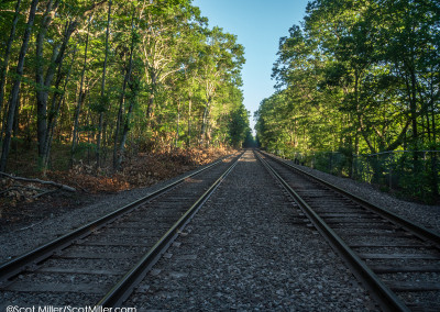 3370504 Railroad tracks near Walden Pond, Concord, MA