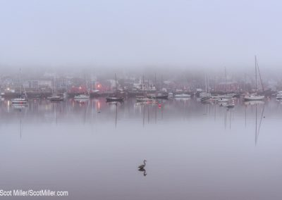 05116 Harbor, foggy morning, Lunenburg, Nova Scotia, Canada