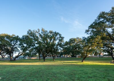 05204 Oak trees and lawn in front of the Texas White House at the LBJ Ranch, Stonewall, Texas