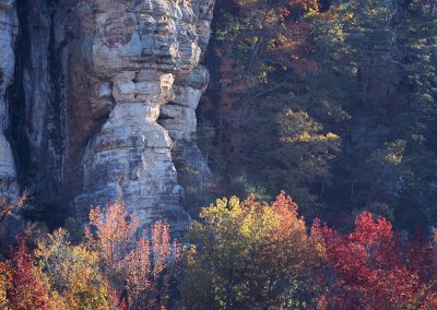 1066 Fall foliage, Roark Bluff, Buffalo National River, AR