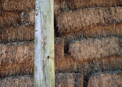 1153 Hay barn detail at LBJ Ranch, Lyndon B. Johnson National Historical Park, Stonewall, TX