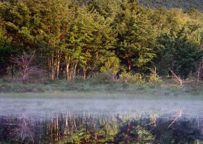 1267 Unnamed pond at sunrise, Katahdin Woods and Waters National Monument, Maine