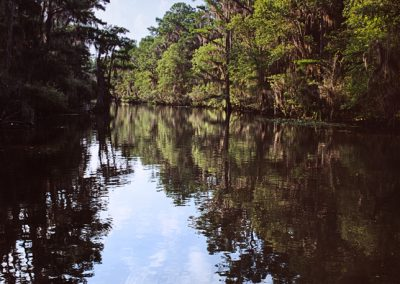 1379 Caddo Lake, Texas