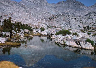 393 Mt. Lyell reflecting, Yosemite National Park, CA