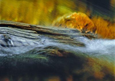 638 Golden stream near Tuolumne Meadows, Yosemite National Park, CA