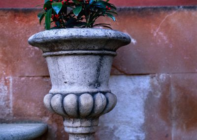 875 Urn with plants on steps, Roussillon, France