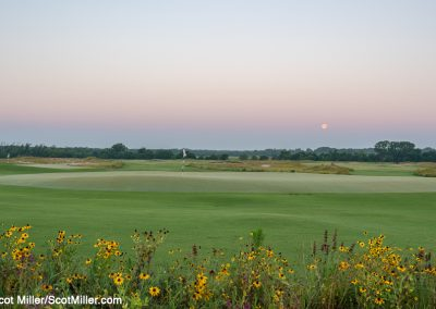 01449 Spring wildflowers and full moon setting, Trinity Forest Golf Club, Dallas, TX