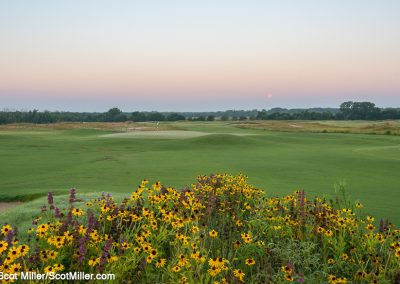 01454 Spring wildflowers and full moon setting, Trinity Forest Golf Club, Dallas, TX