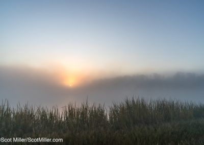 02224 Sun rising through steam fog, Great Trinity Forest, Dallas, TX