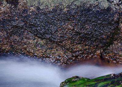 01386 Color, shape, texture, motion, John Muir Wilderness
