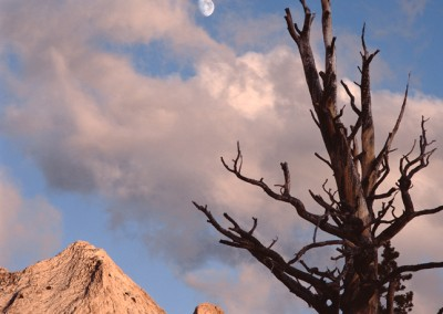 1124 Echo Peaks, moon rising, Yosemite wilderness