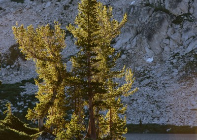 1296 First light, High Sierra lake, Yosemite wilderness